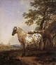 Art - Oil Paintings - Masterpiece #3026 - BERCHEM, Nicolaes - Landscape with Two Horses - Gallery Quality