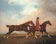 Art - Oil Paintings - Masterpiece #3034 - STUBBS, George - William Anderson with Two Saddle-horses er - Museum Quality