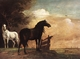 Art - Oil Paintings - Masterpiece #3042 - POTTER, Paulus - Horses in a Field zg - Gallery Quality