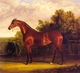 Art - Oil Paintings - Masterpiece #3044 - Herring, John F. Sr. - Negotiator the Bay Horse in a Landscape - Museum Quality