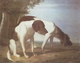 Art - Oil Paintings - Masterpiece #3095 - Jacques-Laurent Agasse - Foxhounds in a Landscape - Gallery Quality
