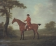 Art - Oil Paintings - Masterpiece #3097 - John Nost Sartorius - A Huntsman in a Wooded Landscape - Gallery Quality