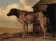 Art - Oil Paintings - Masterpiece #3132 - POTTER, Paulus - Watchdog - Museum Quality
