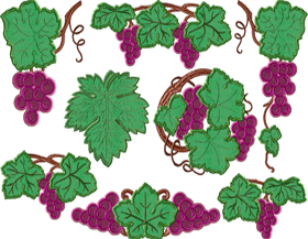 Grapevine Applique