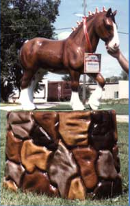 3' Clydesdale