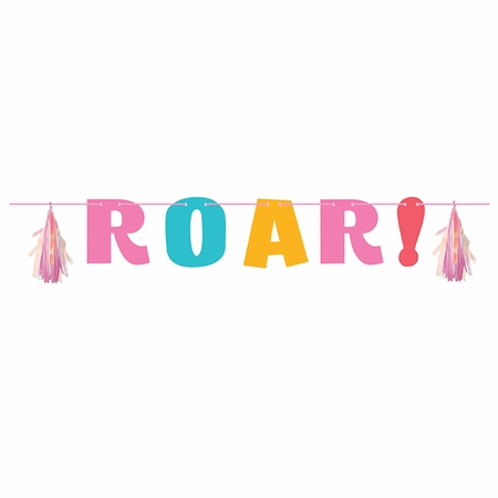 Girl Dinosaur Banners 6 ct