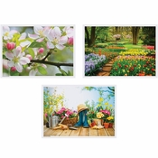 "Multicolored Spring 10"" x 14"" Multipack Placemats in quantities of 1,000 / case"
