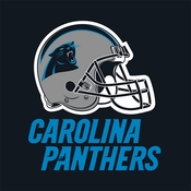 Carolina Panthers Luncheon Napkins