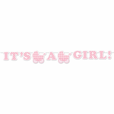 Its a Girl Gingham Banners 6 ct