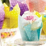 Wholesale Colored Tulip Baking Cups