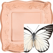 Entomount Butterfly Party Supplies