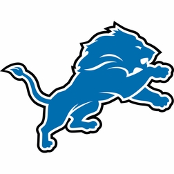 Blue and silver Detroit Lions Party Supplies