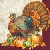 Traditional Turkey Dinner Napkins 192 ct