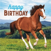 Wild Horse Happy Birthday Luncheon Napkins 192 ct