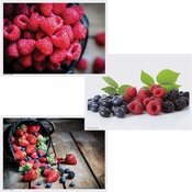 Berry Multipack Placemats 1,000 ct