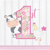 Farmhouse 1st Birthday Girl Beverage Napkins 192 ct