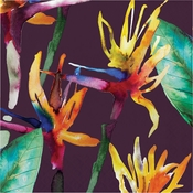 Bold Tropics Luncheon Napkins 192 ct