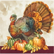 Traditional Turkey Beverage Napkins 192 ct