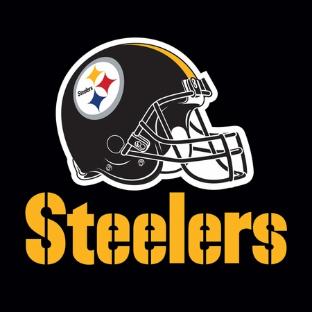 Black, white and gold Pittsburgh Steelers Luncheon Napkins sold in quantities of 16 / pkg, 12 pkgs / case