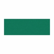 Green 20,000 ct adhesive Napkin Band sold in quantities of  2500 / pkg, 8 pkgs / case