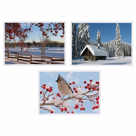 """Multicolored Winter 10"""" x 14"""" Multipack Placemats in quantities of 1,000 / case"""