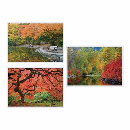 "Multicolored Fall 10"" x 14"" Multipack Placemats in quantities of 1,000 / case"