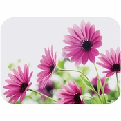 Bright Daisy Traymats 500 ct.