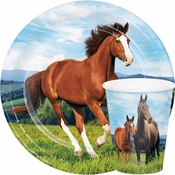 Wild Horse Party Supplies