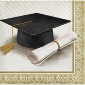 Classic Graduation Beverage Napkins 192 ct
