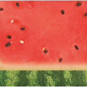 Watermelon Picnic Beverage Napkins 192 ct
