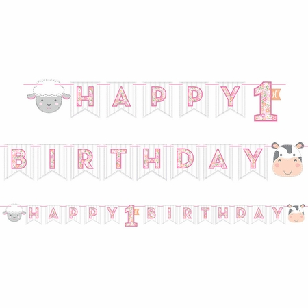 Farmhouse 1st Birthday Girl Banners 12 ct