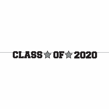 Class of 2020 Graduation Banners 12 ct