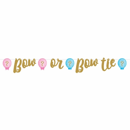 Gender Reveal Balloons Banners 6 ct