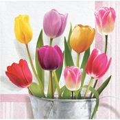 Springtime Tulips Beverage Napkins 192 ct