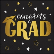 Grad Adventure Luncheon Napkins 192 ct