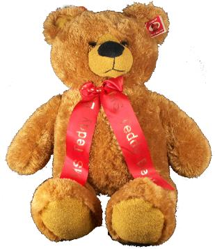 Ribbon with your text ( Only ribbon, not the bear)