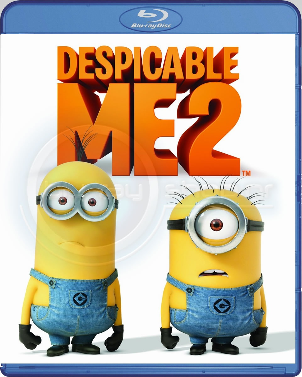 Despicable Me 2 Blu-ray (USED)