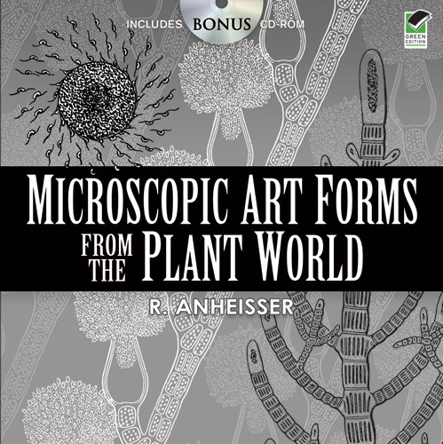 Microscopic Art Forms from the Plant World