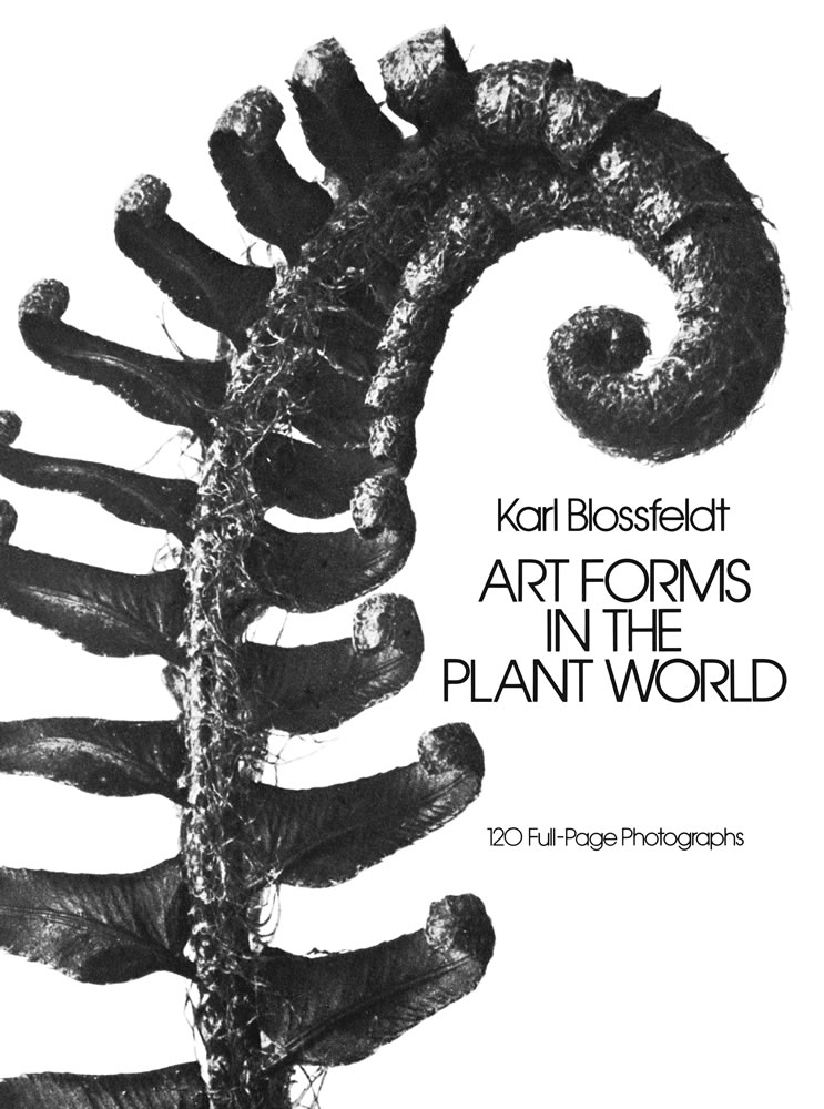 Art Forms in the Plant World: 120 Full-Page Photographs