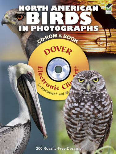North American Birds in Photographs CD-ROM and Book