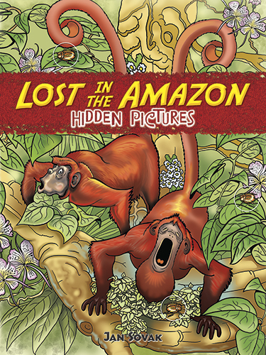 Lost in the Amazon Hidden Pictures