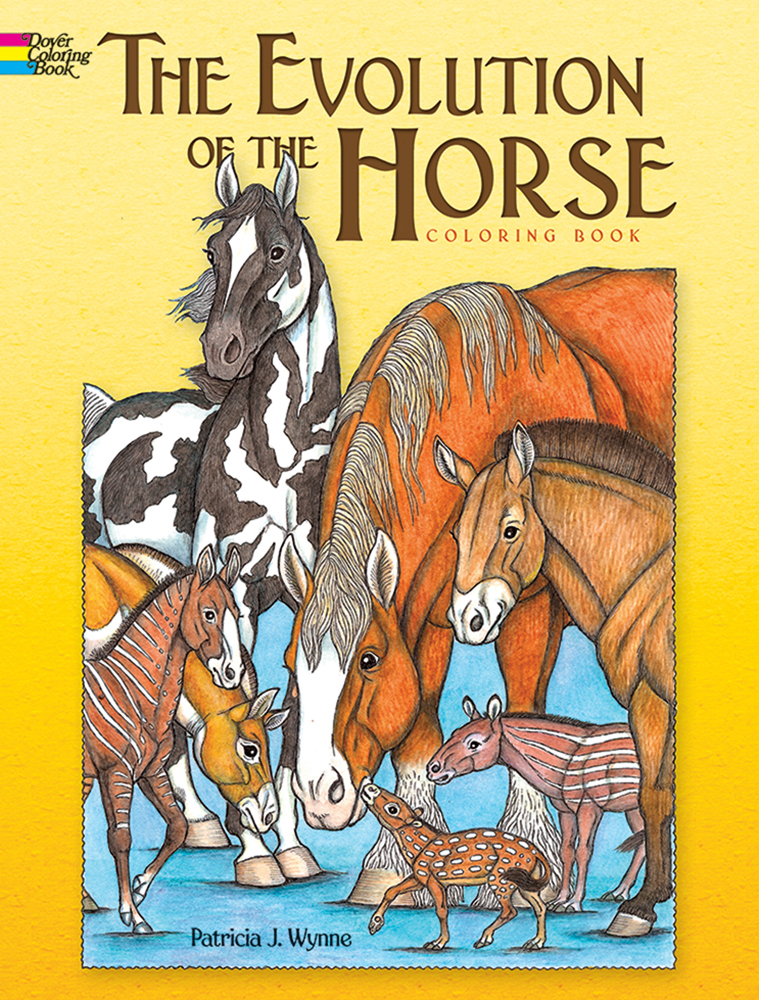 The Evolution of the Horse Coloring Book