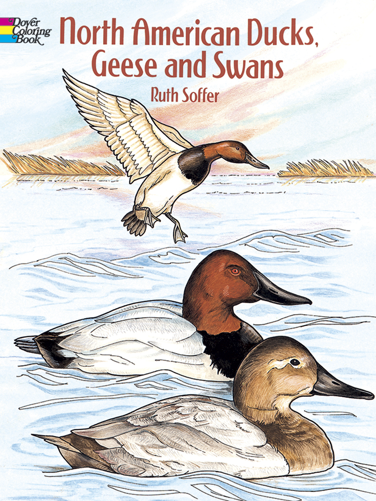 North American Ducks, Geese and Swans Coloring Book