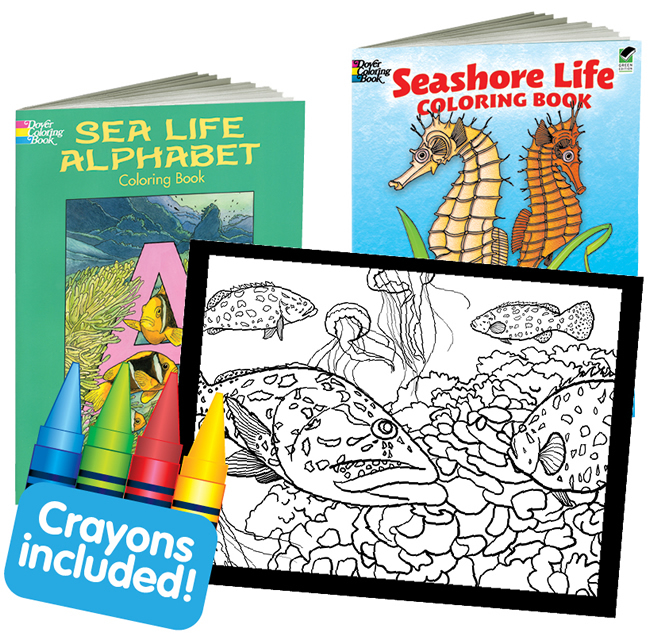 Dover Coloring Box -- Sea Life