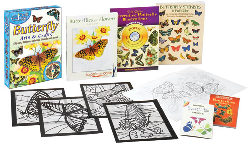 Butterfly Arts & Crafts Fun Kit