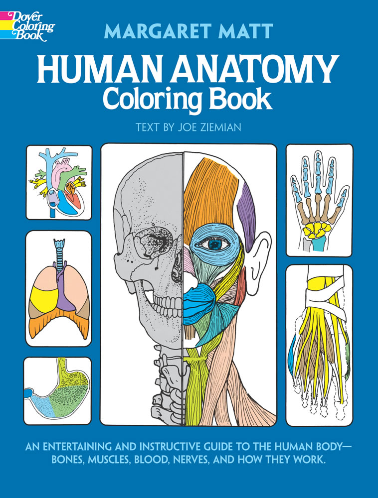 Human Anatomy Coloring Book: An Entertaining and Instructive Guide to the Human Body - Bones, Muscles, Blood, Nerves, and How They Work