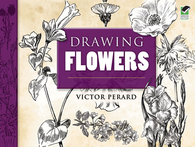 Drawing Flowers (eBook)