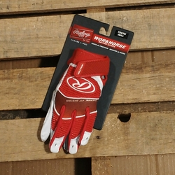 Workhorse Youth Batting Gloves Red