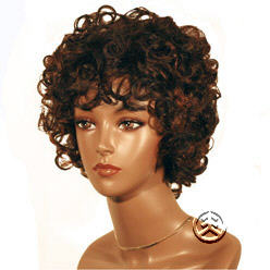 Beverly Johnson Wig H268 Human
