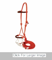 Horse Halters - 236022
